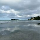 Nelson, South Island, New Zealand by Sharon Brown