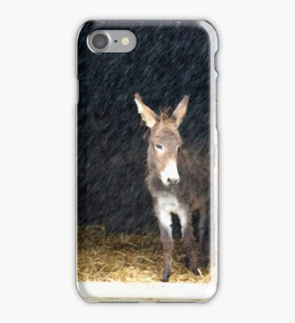 Sanctuary From the Rain iPhone Case/Skin