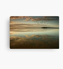 Lake Wollumboola Reflections Canvas Print