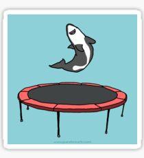 Trampoline Shark Sticker