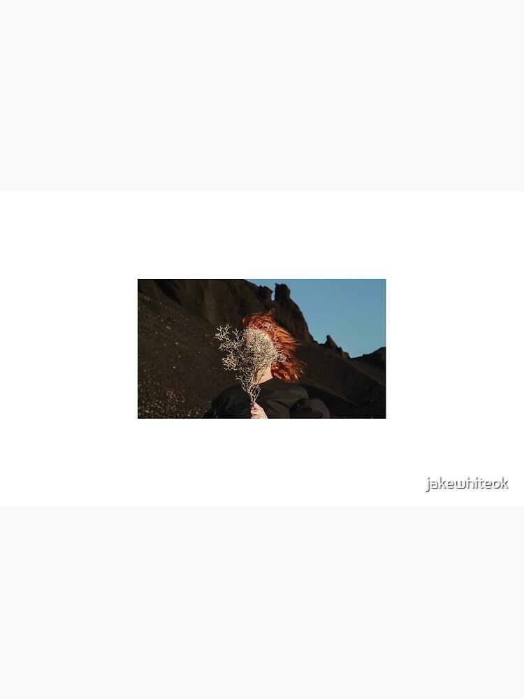 Goldfrapp - Silver Eye by jakewhiteok