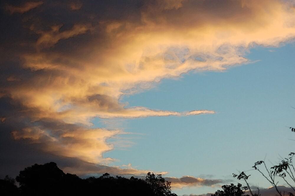 Sunset rain by Lawrence Meckan