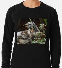 Yellow Wattle Bird Lightweight Sweatshirt