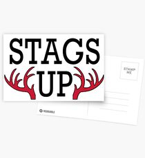 Fairfield University, Stags Up Postcards