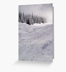 Down the mountain ... Greeting Card
