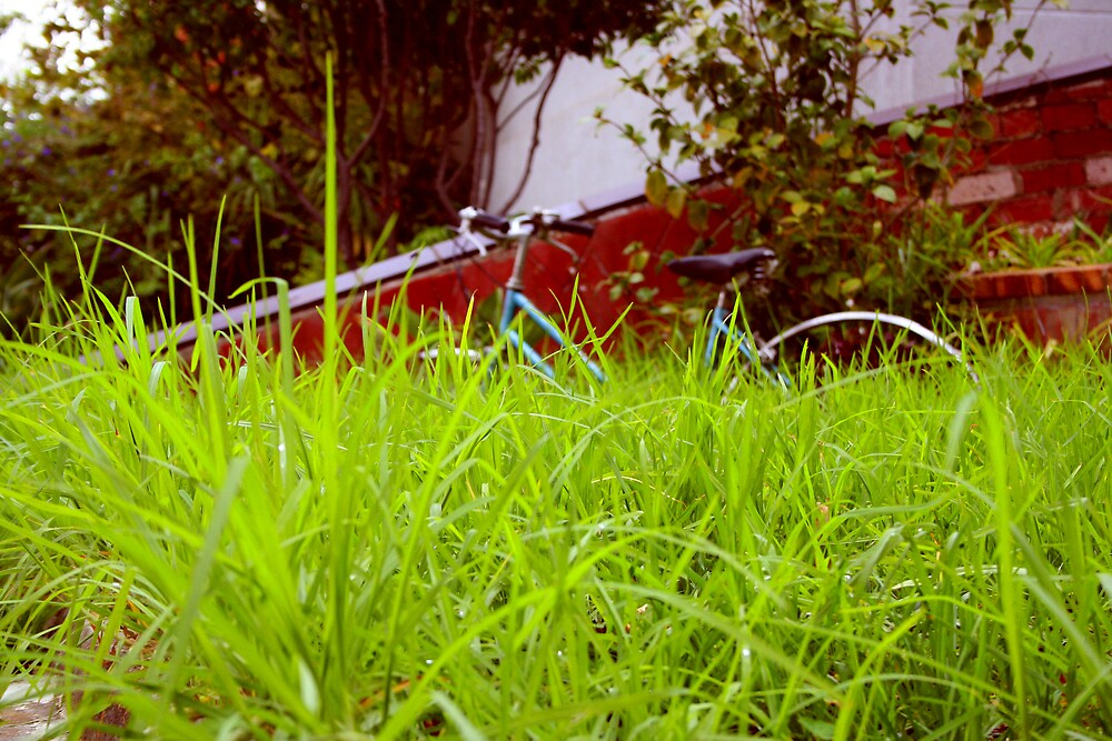 Grassycle by sunny