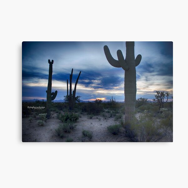 desert sunset#1 Metal Print