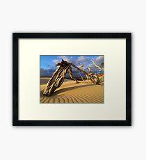 Deadwood Framed Print