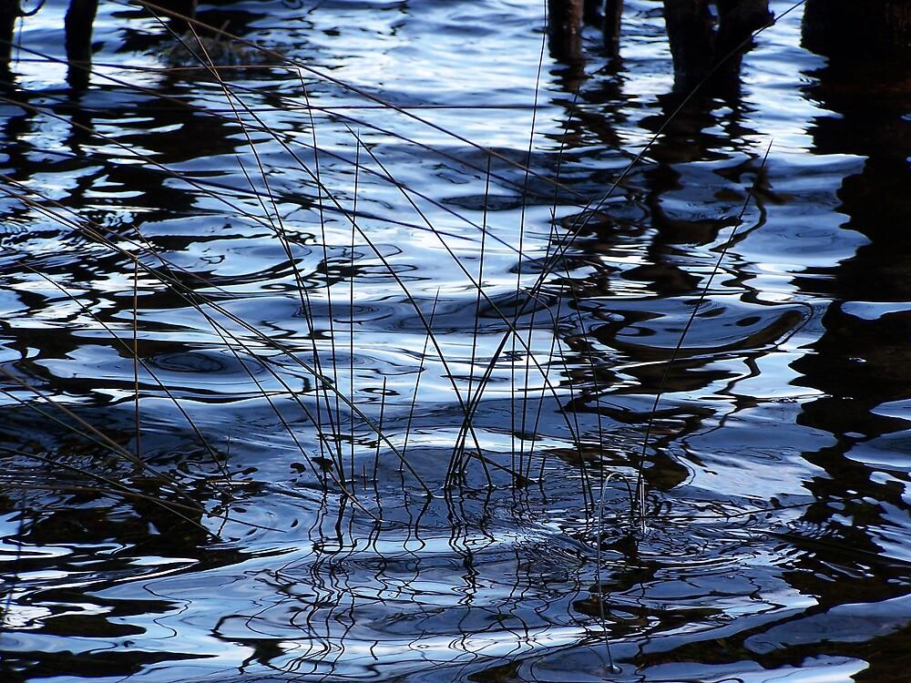 Water Shadows by Gavin