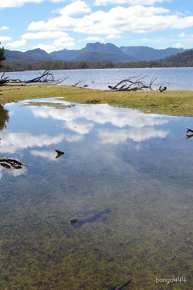 Lake St Clair by bongo444