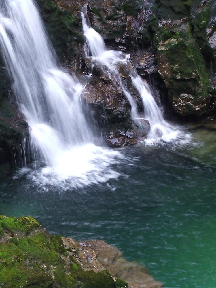 Waterfall In Slovenia by Samara  Lee