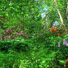 Magic Garden by Christiaan