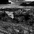 Guerilla Bay by Gavin
