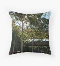 Parkway Throw Pillow