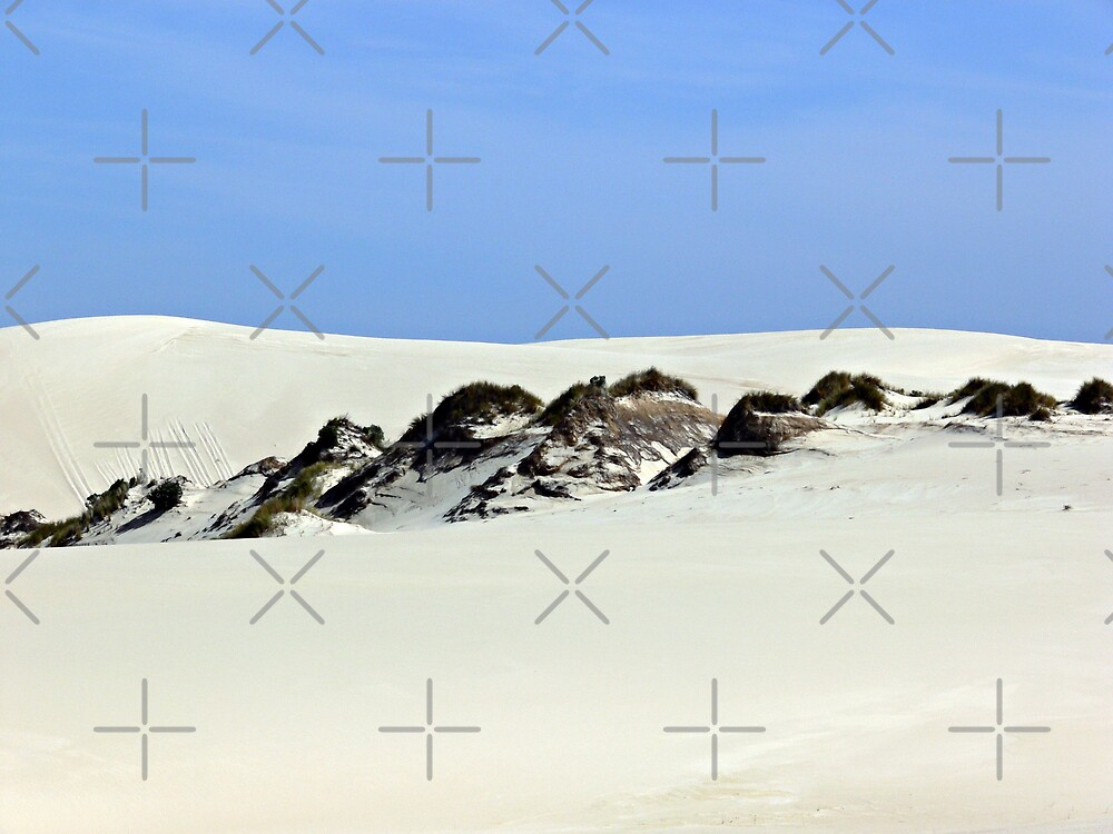 The Yeagarup Dunes  by Sandra Chung