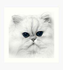 Casper Art Print