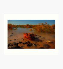 Redrock mangroves Art Print