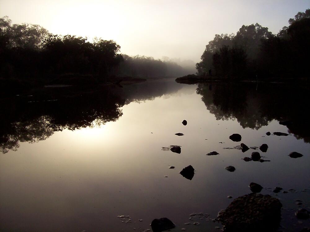 Misty morn by dodgsun