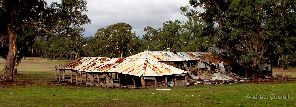 Woolshed by Andrew Cowell
