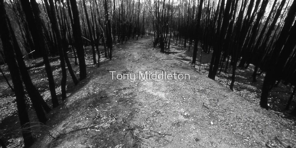 burnt track by Tony Middleton