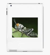 Insect robot iPad Case/Skin