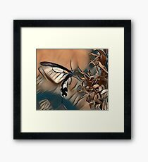 Butterfly Collecting Pollen Framed Print