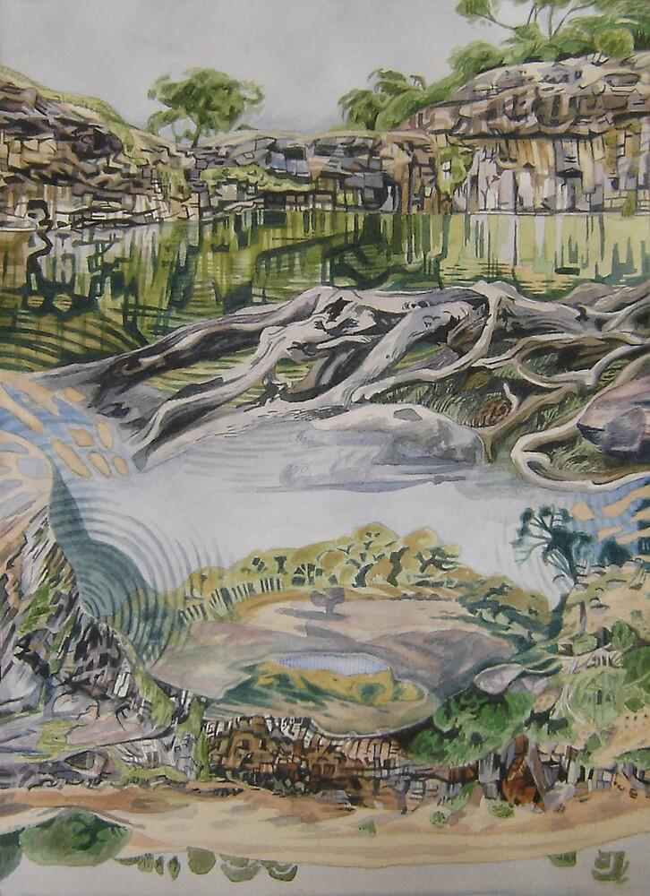 Turpin Falls I by SgianDubh
