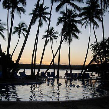 Fiji evening by xavier