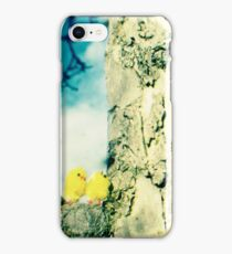 Chicks in a tree iPhone Case/Skin