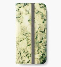 Chicks in a tree iPhone Wallet/Case/Skin