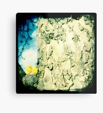 Chicks in a tree Metal Print