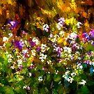 Flower horizontil  by browncardinal8