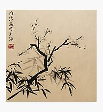 Plum Blossom With Bamboo - Ink Photographic Print