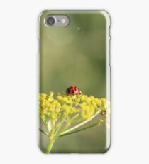 Ladybird on a wild flower. iPhone Case/Skin