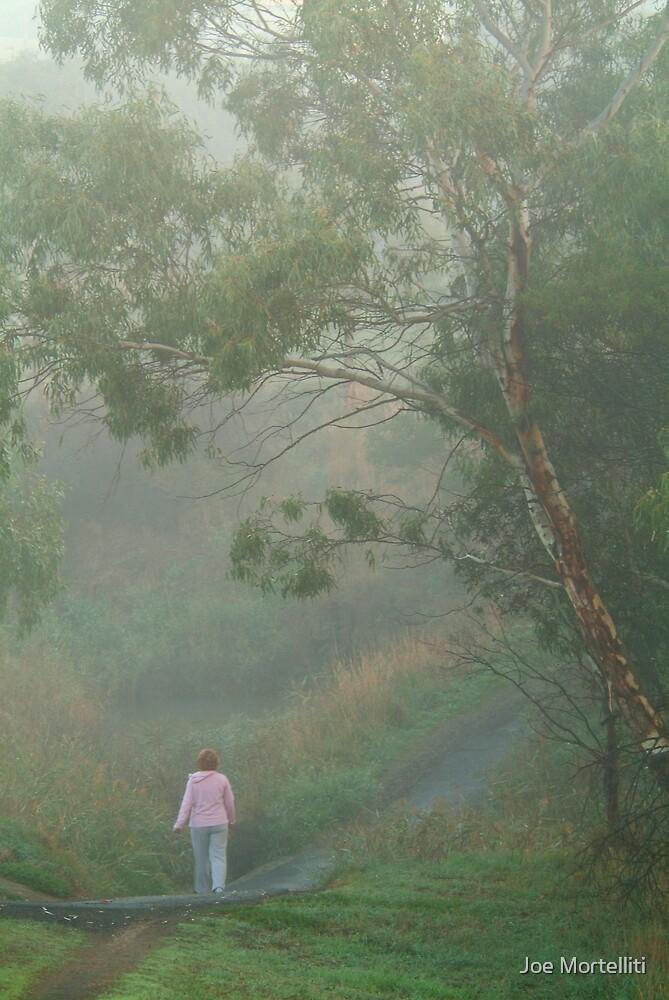 Misty Morning Walk,Waurn Pond Creek by Joe Mortelliti