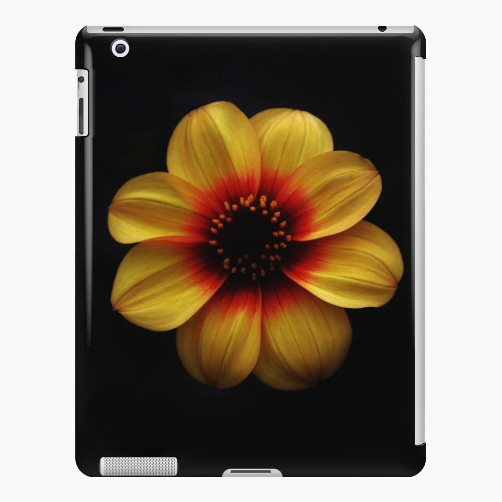 dunkel und hell iPad-Hülle & Skin