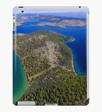Mir iPad Case/Skin