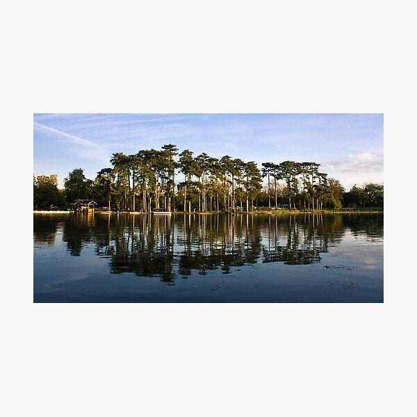 Bois de Boulogne Photographic Print