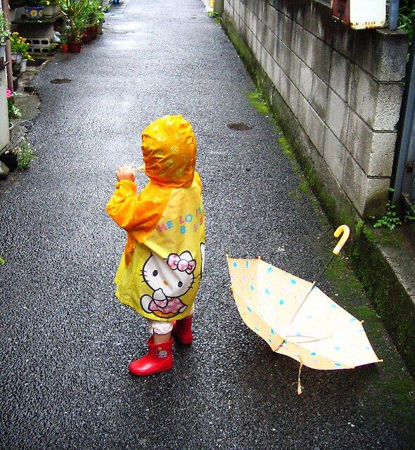 Rainy Day by Sally Li