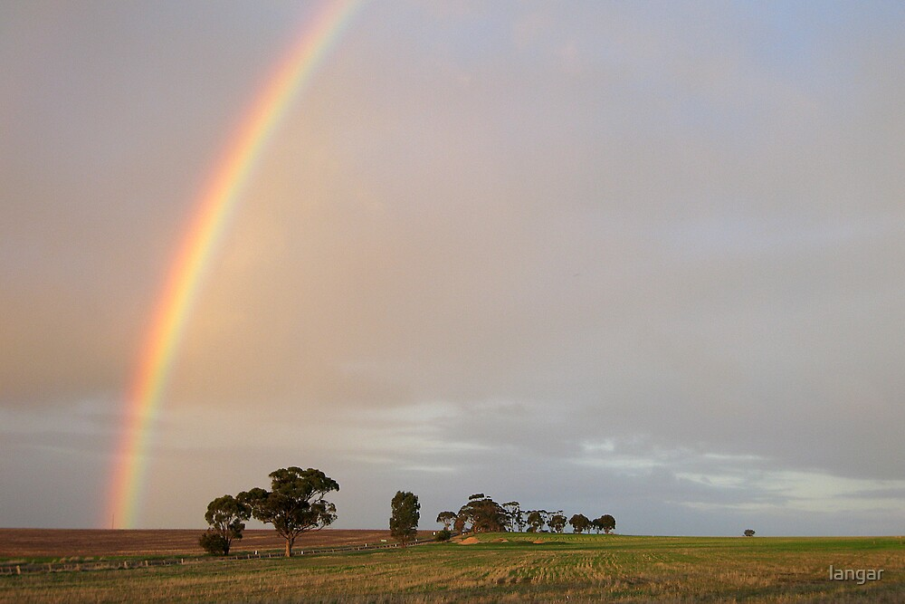 After the rain  by langar