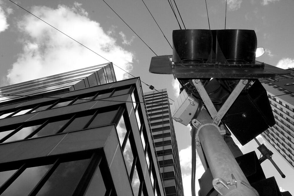 Looking Up by Reza Shams Latifi