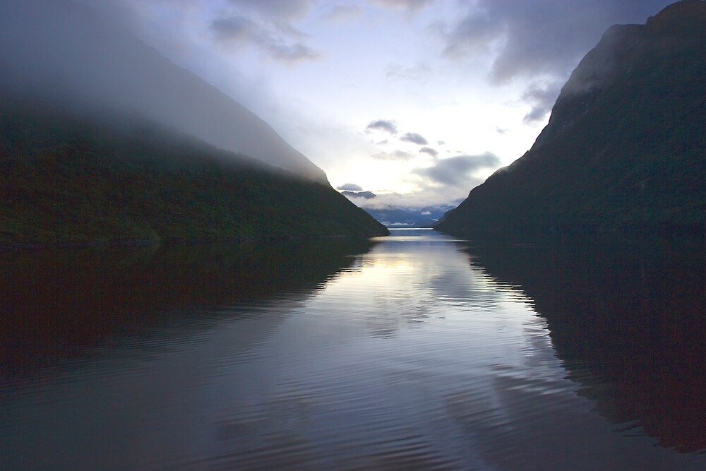 Evening light in Doubtful Sound, Fiordland, New Zealand by Bruce  Thomson