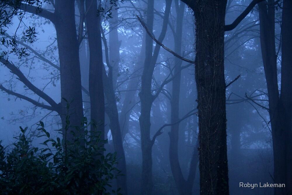 Blue mist by Robyn Lakeman