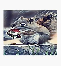 Squirrel Eating a Berry Photographic Print