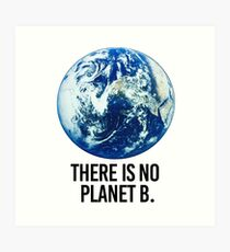Es gibt keinen Planeten B Kunstdruck