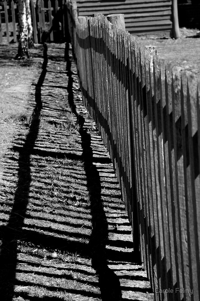 "Old fence ("" lines - 1 "") by Carole Felmy"