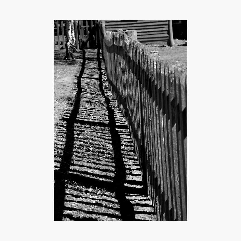"""Old fence ("""" lines - 1 """") Photographic Print"""