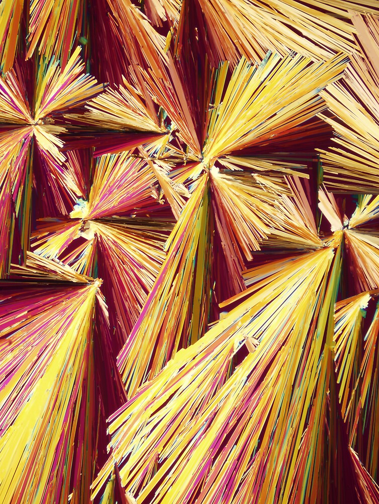 Quinine crystals under polarised light by Michael Dingley