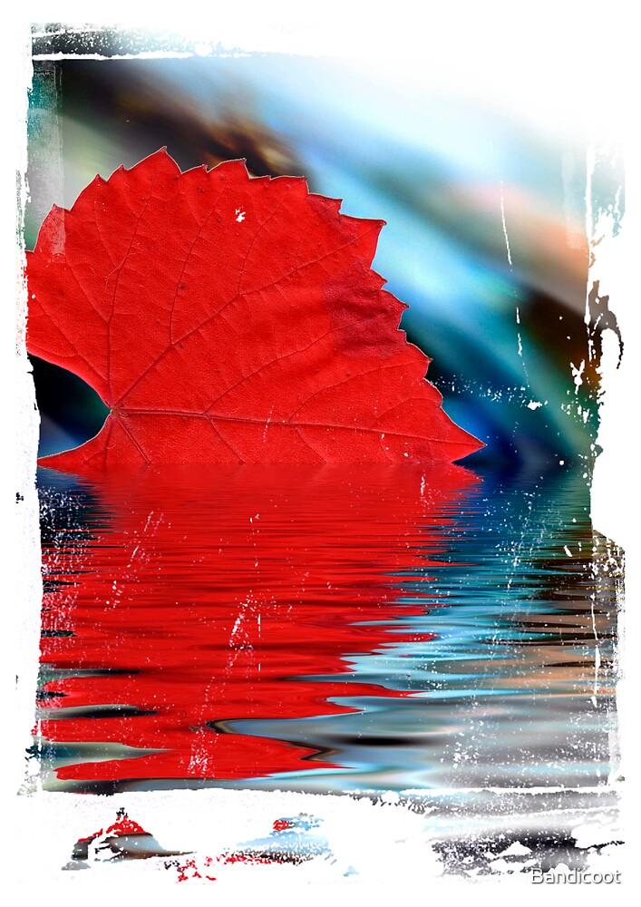 Autumn Hues by Bandicoot