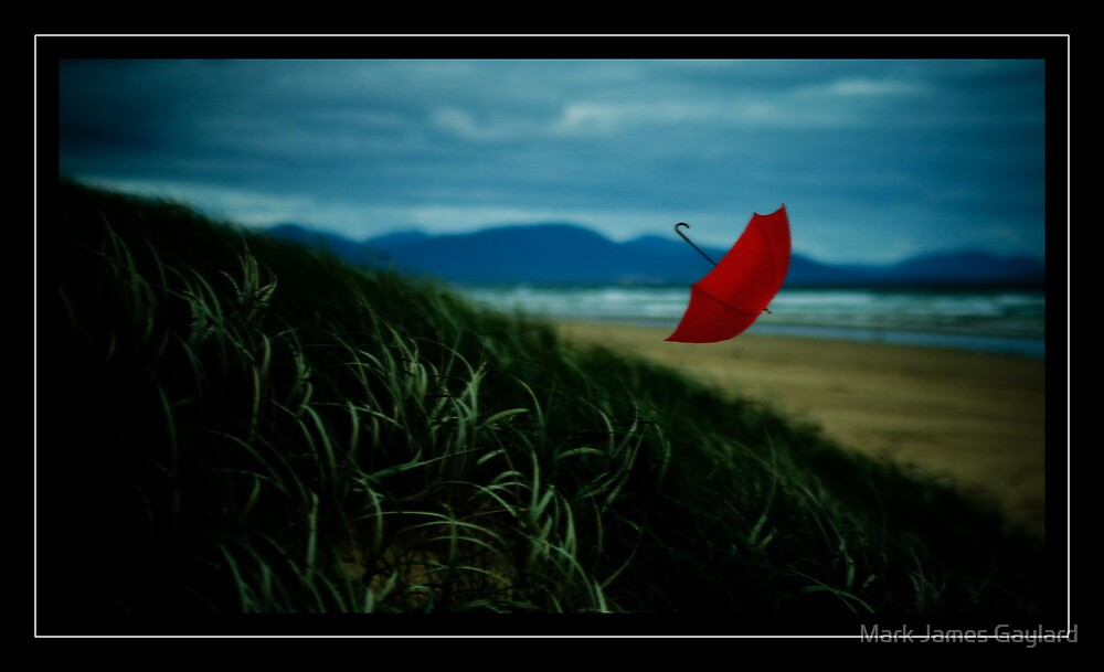 red umbrella by Mark James Gaylard